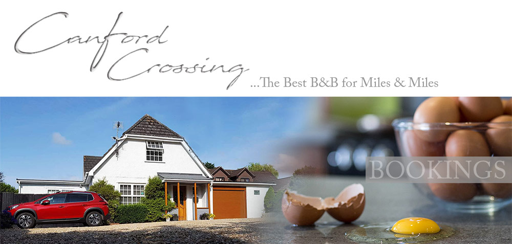 Canford Crossing B&B - BOOKINGS