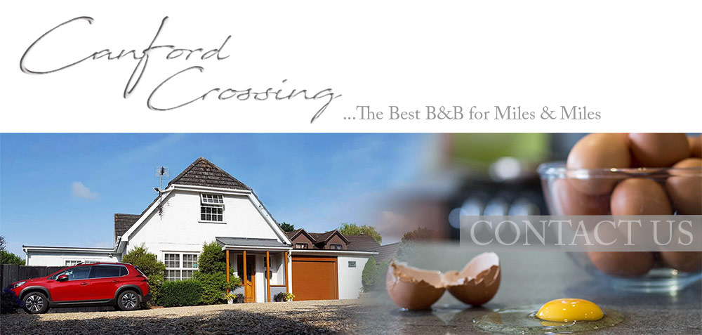 Canford Crossing B&B - CONTACT US